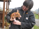 Farmer_shelly_and_piglet